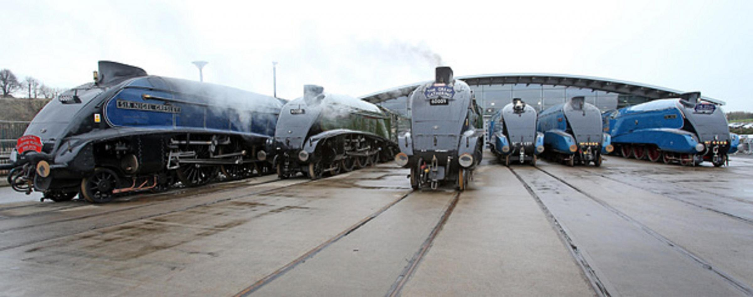 Record numbers flock to Locomotion to see Mallard and her sisters together for final time