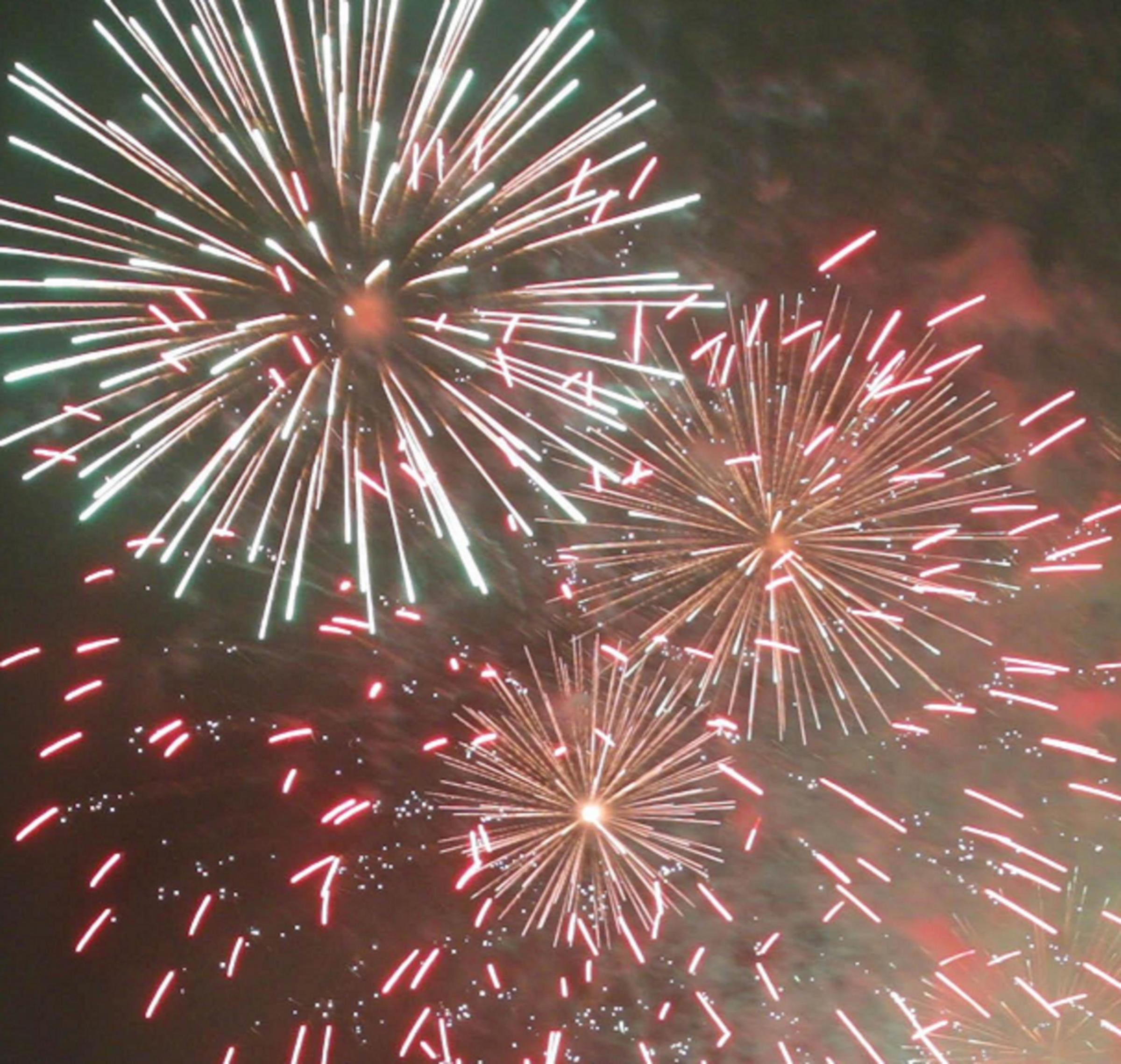 The fireworks display at Oakleaf Sports Complex in Newton Aycliffe could be brought back as a ticketed event