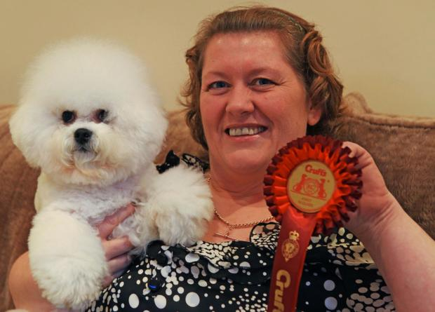 PROUD OWNER: Echo (Burneze Northern Echo) the bichon frise, from Tow Law, owned by Ann Marie Burns got