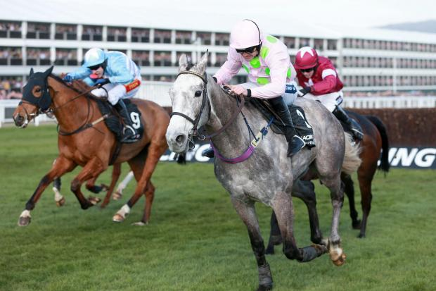 WAR FRONT: Eventual winner Western Warhorse ridden by Tom Scudamore (left) gets up to beat early front runner Champagne Fever ridden by Ruby Walsh in yesterday's Arkle Challenge Trophy