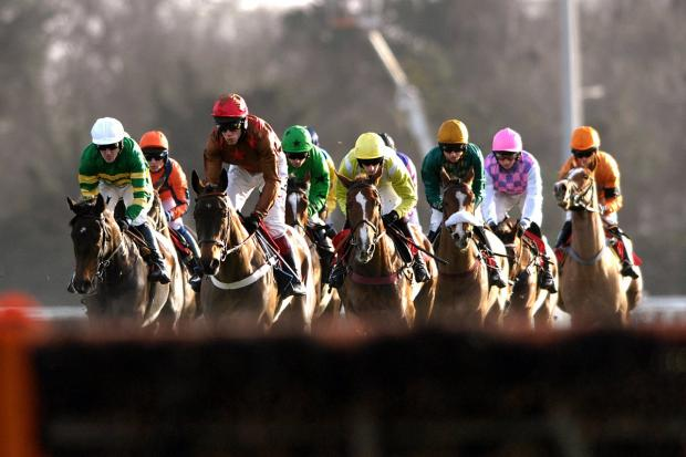 THRILLS AND SPILLS: Last week's Cheltenham Festival contained its usual share of highs and lows