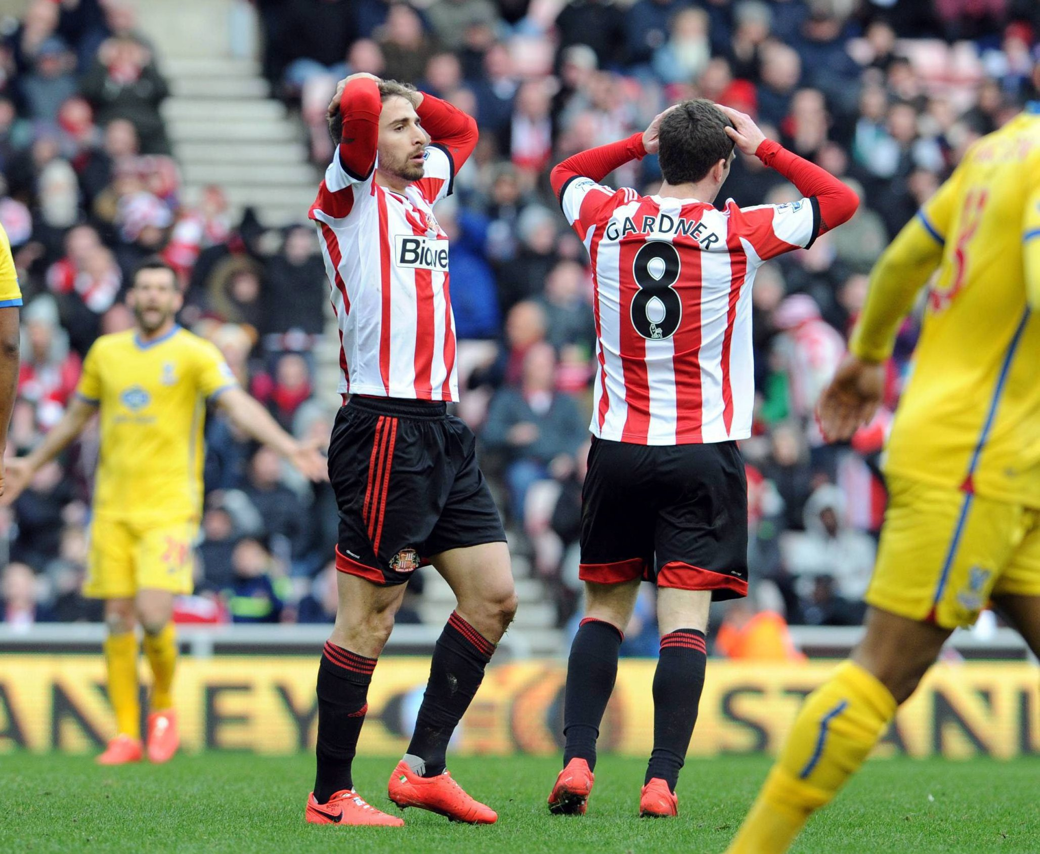 Wanted man: Fabio Borini has impressed Gustavo Poyet