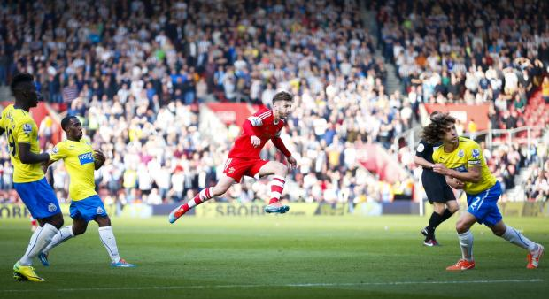 SAINTS ROMP: Fabricio Coloccini tries to block as Adam Lallana lets fly to score the third of Southampton's four goals at St Mary's