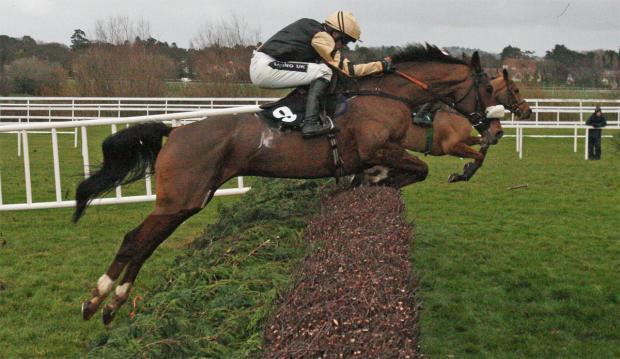 TOP WEIGHT: Tiday Bay is one of 65 still in contention for a Grand National place