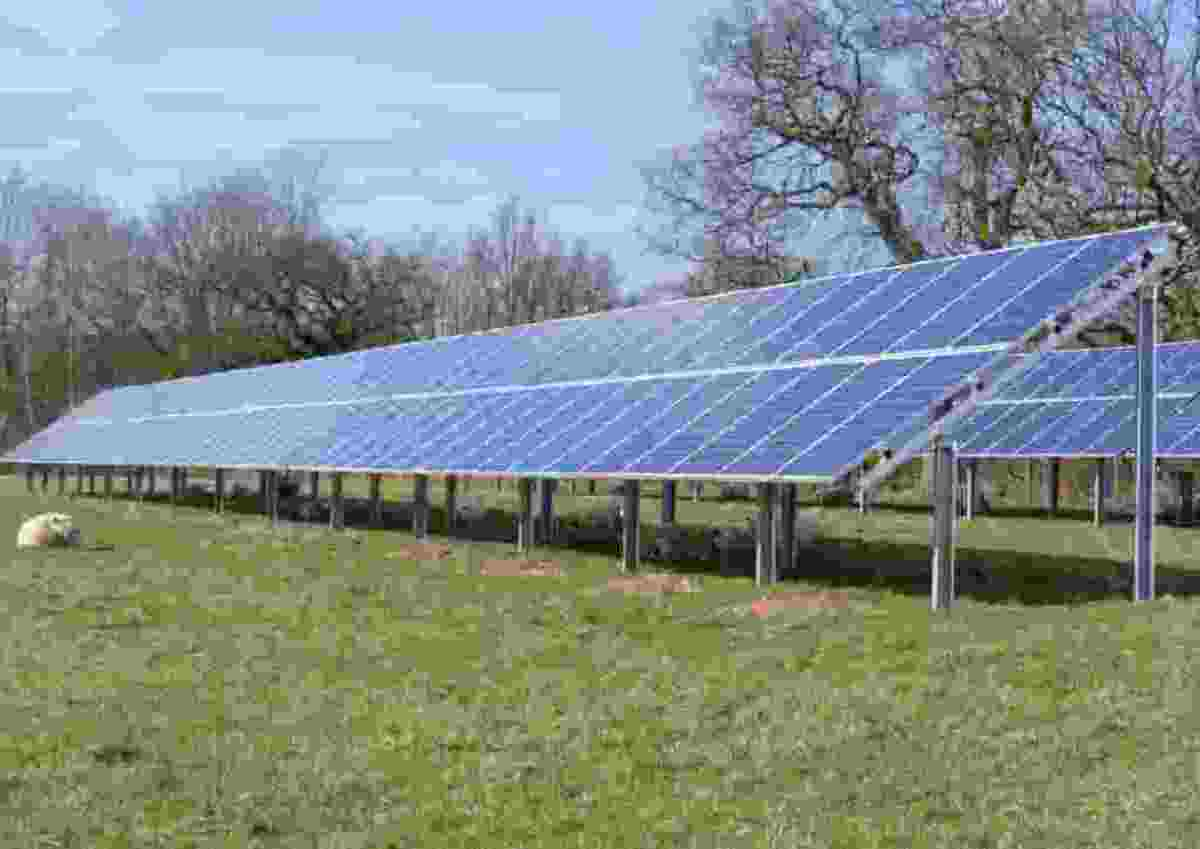 How the solar panels would look - with plenty of room for sheep to graze beneath