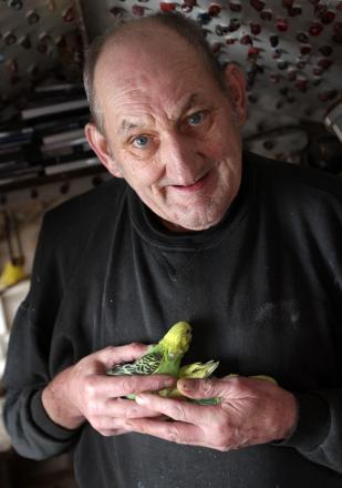 Jack Whitehead who has had his budgies stolen