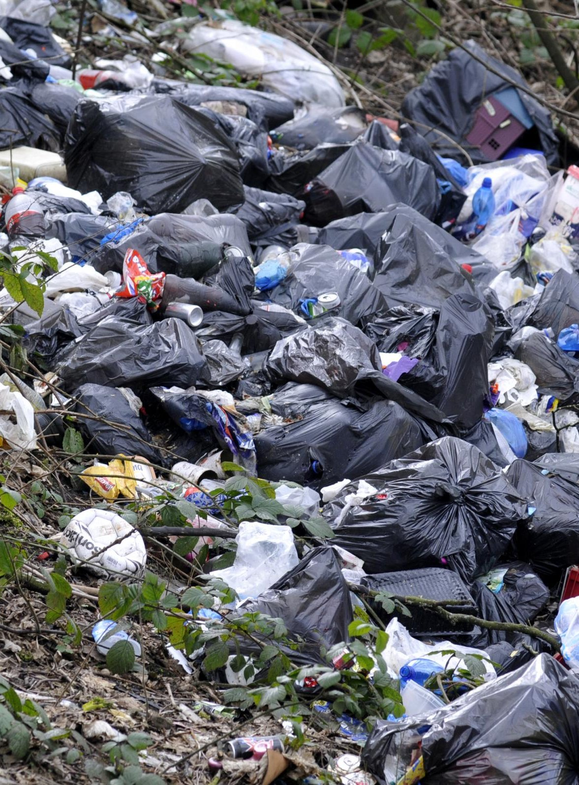 Environment Secretary Andrea Leadsom has announced a crackdown on litter louts