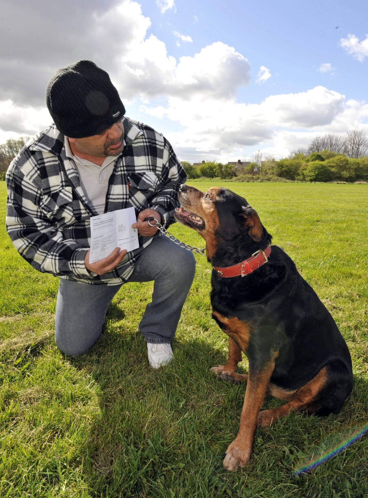 Zeus, a Rottweiller cross who has been sent a polling car