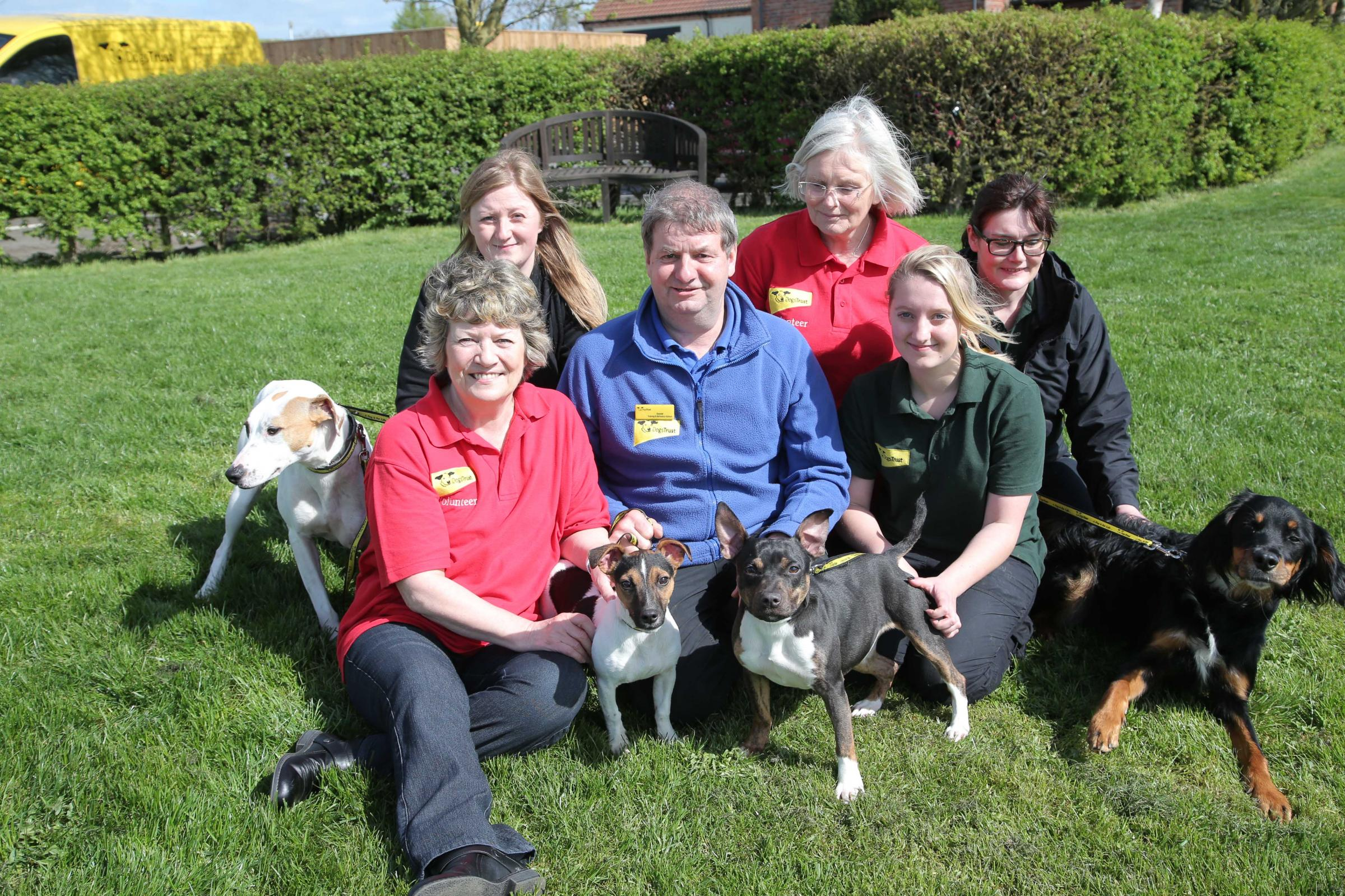 Thousands of dogs rehomed as Dogs Trust Darlington prepares to celebrate its 20th anniversary