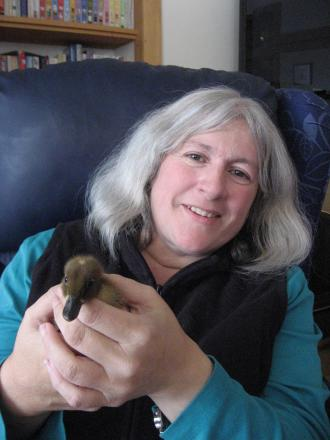 Debbie Green handles a duckling at the Butterwick Hospice.