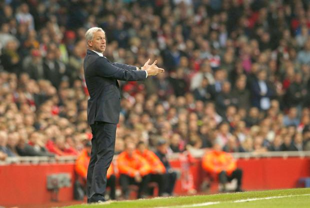 The Northern Echo: DEFIANT: Alan Pardew will not leave Newcastle United - no matter how much criticism is hurled in his direction