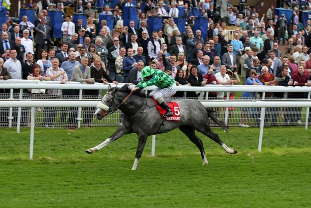 A NOVEL WINNER: The Grey Gatsby lands the Betfred Dante Stakes at York