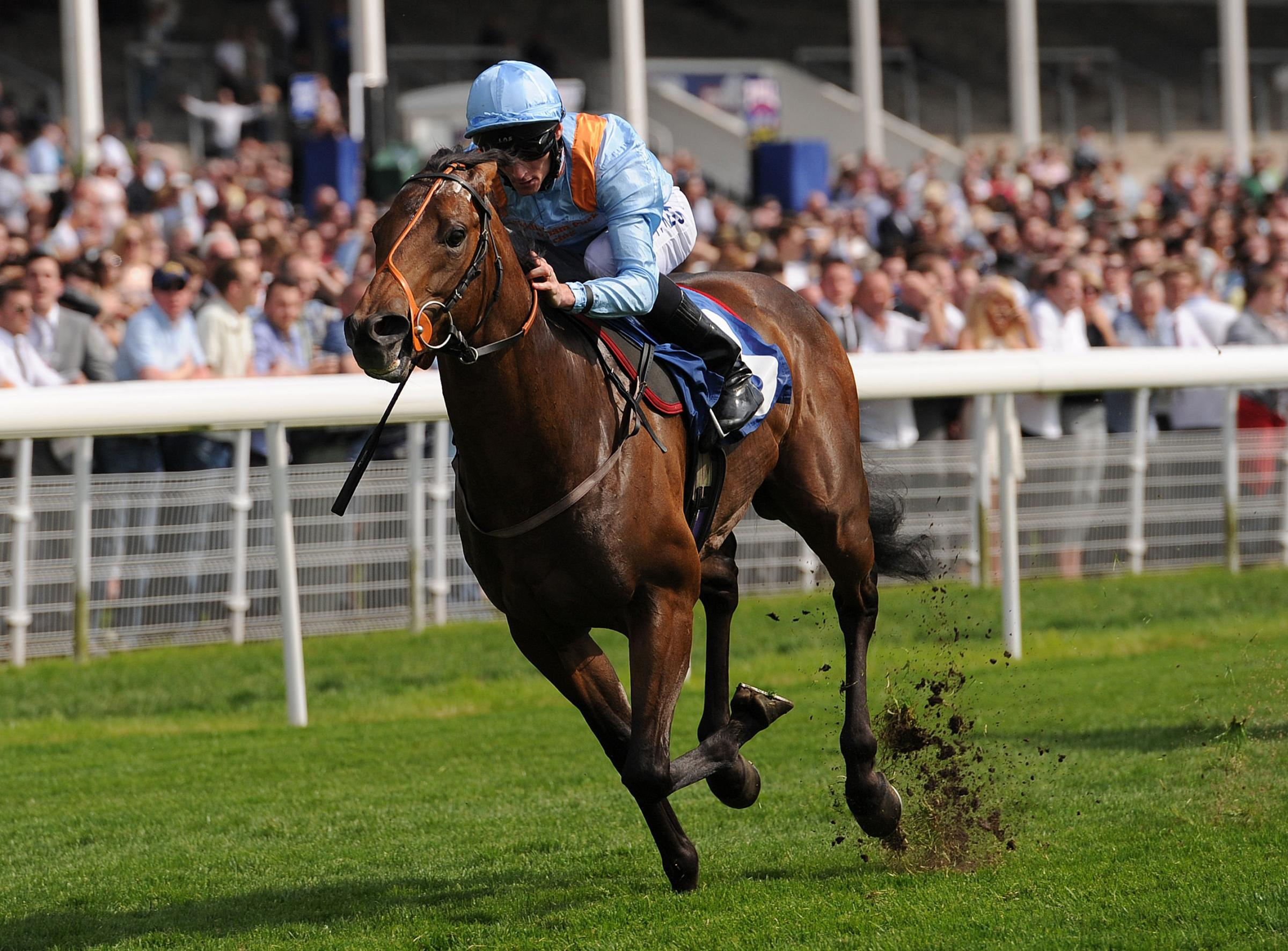 All eyes on Newbury after York excitement