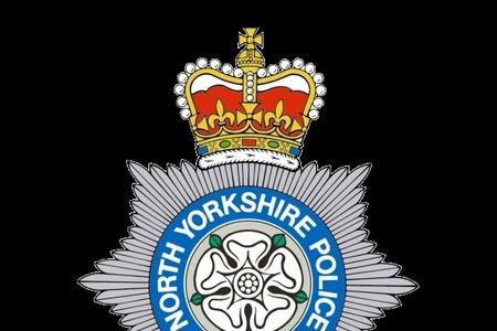 WITNESS PLEA: North Yorkshire Police are appealing to anyone who saw a blue Vauxhall Astra crashed near Ferrensby on Sunday night to call them