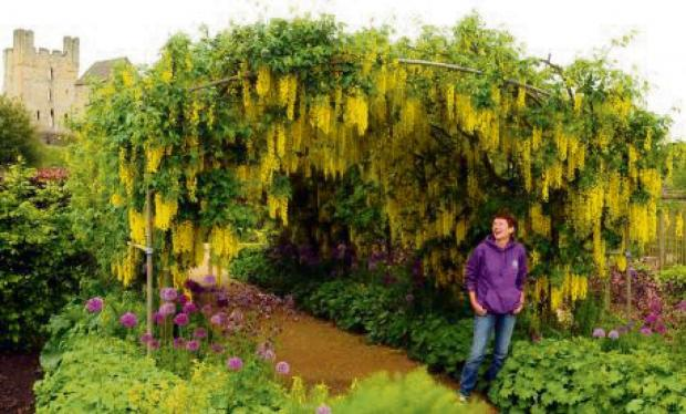 PRETTIEST GARDEN: Tricia Harris with the Laburnum Arch in the Helmsley Walled Garden.