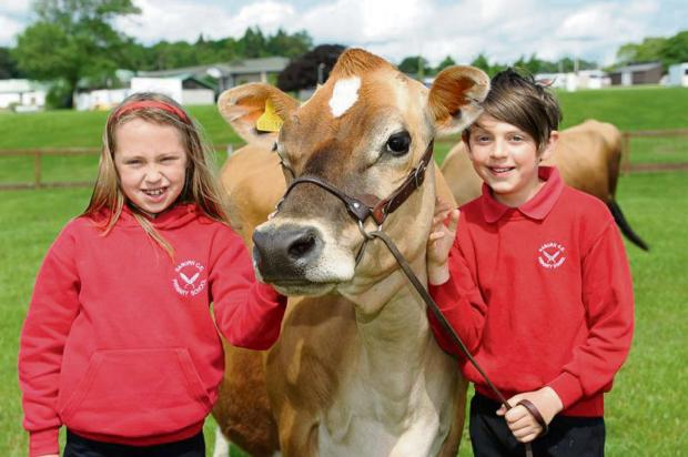 HAPPY DAYS: Evie Robinson, nine, and Bertie Stasiulevicuis,10),from Naburn C of E School, York with a Jersey cow enjoying the Countryside Days event for primary school children.