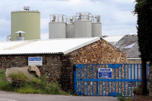 The Northern Echo: JOB LOSSES: Rock Farm Dairy in Wheatley Hill. Picture: DAVID WOOD (7109258)