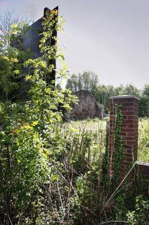 HOUSING PLANS: Land near the ruins of an old chapel at Magdalene Heights, Gilesgate where plans are in place to build student accommodation. Picture: ANDY LAMB  (7995394)