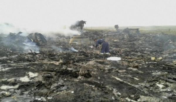 HARROWING SCENE: A worker inspects the crash site of the Malaysia Airlines plane near the village of Hrabove, Ukraine