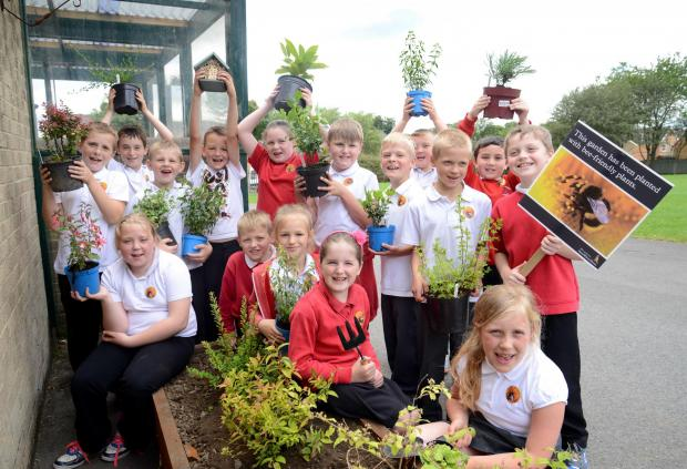 BUZZY BEES: CHildren from the Grove Primary School with some of the bee-friendly equipment donated by housebuilder David Wilson Homes