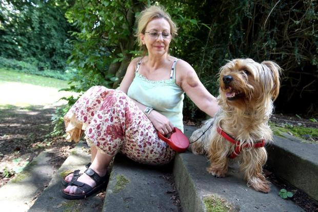 ATTACKED: Deborah Forster and her Yorkshire terrier Ted were both injured after being set upon by another dog near to where they live in Darlington.  Picture: CHRIS BOOTH