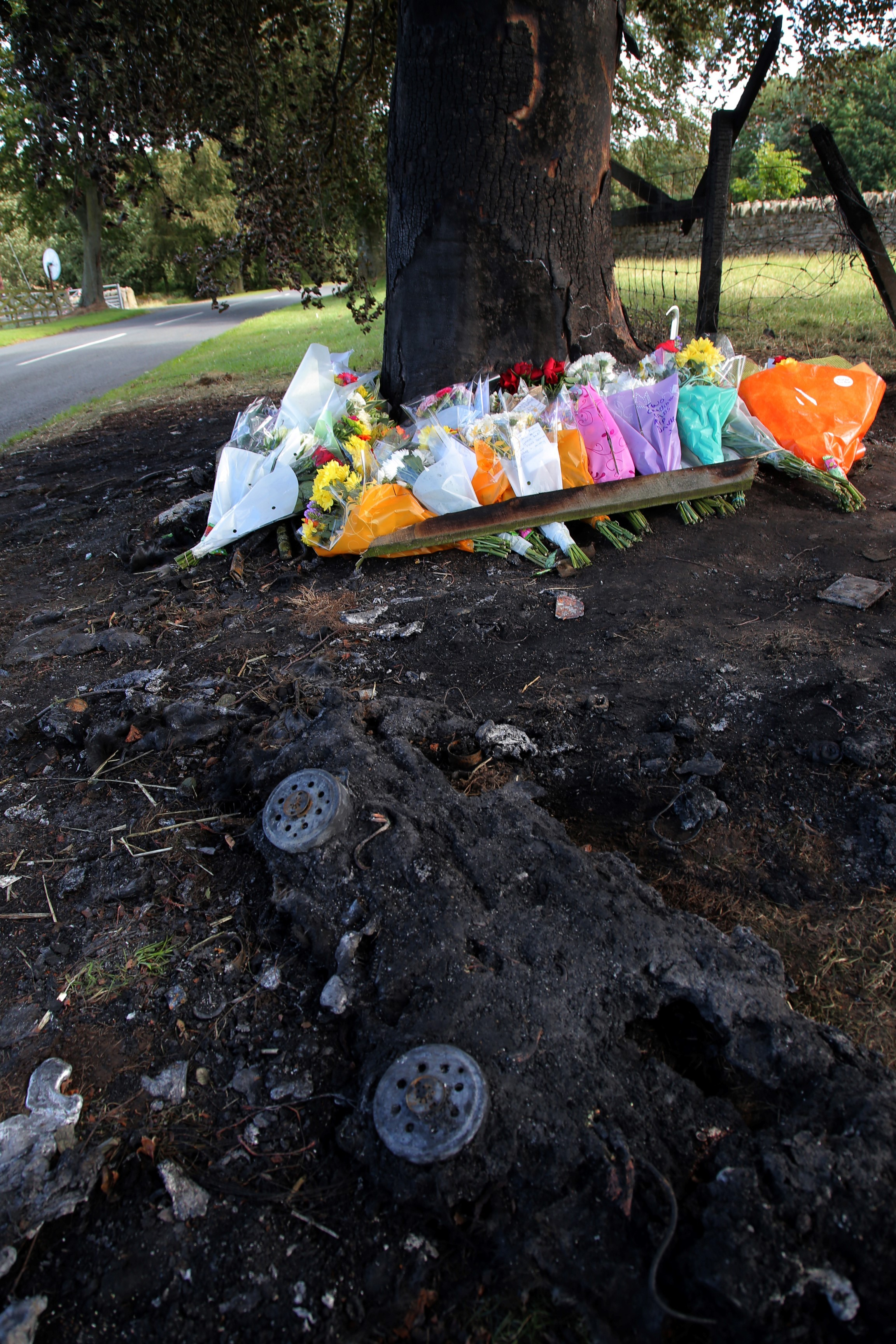 Roadside shrine to two friends after car hits tree and bursts into flames