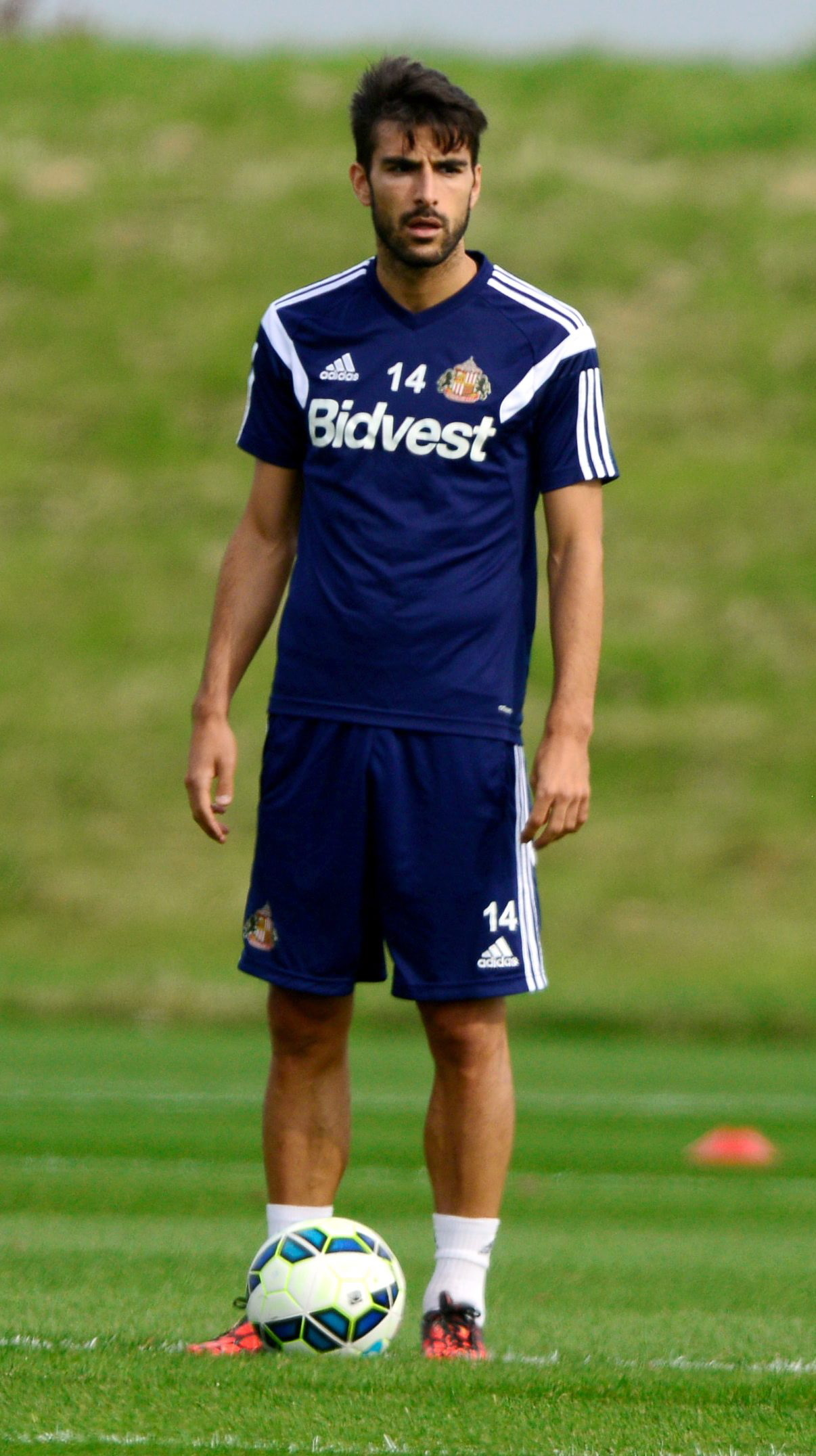 Summer recruit: Spaniard Jordi Gomez arrived at Sunderland with experience of playing in England with Wigan and Swansea