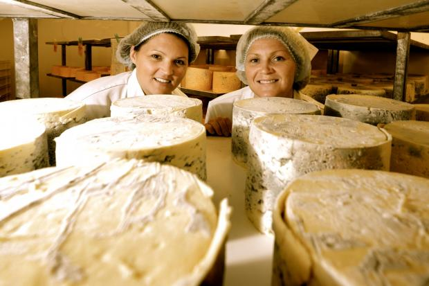 SAY CHEESE: Sisters Kate and Caroline Bell in the Shepherd's Purse dairy.