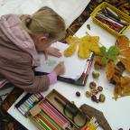 The Northern Echo: BIG DRAW: Young artist at work in Gisborough Priory Woodland Gardens.