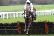 AURORE AURA: Aurore D' Estruval, ridden by Tony McCoy, jumps the final flight en route to victory in the OLBG.com Mares Hurdle race on Charlie Hall Chase day at Wetherby