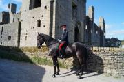 ON PARADE: Trooper Copenhagen of the Household Cavalry, a guest of honour last year, at Middleham Castle.