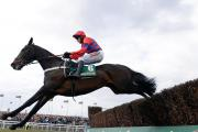 COMEBACK: Sprinter Sacre and Barry Geraghty jump the final fence on their way to victory in April 2013 in the John Smith's Melling Chase on Ladies Day at  Aintree