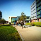 The Northern Echo: CAMPUS: Students thronging around Sunderland University campus