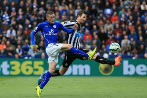 Newcastle recall Mike Williamson from Wolves