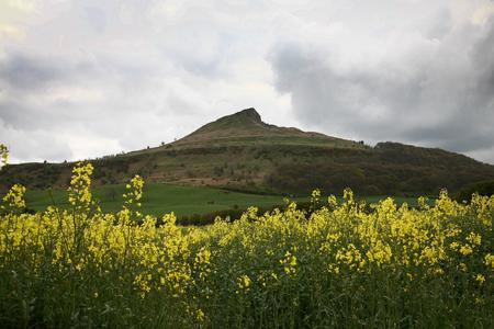 The Northern Echo: RESCUE: Roseberry Topping