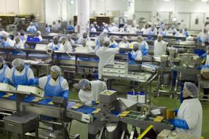 LINE: Workers on the production line at Greencore Group
