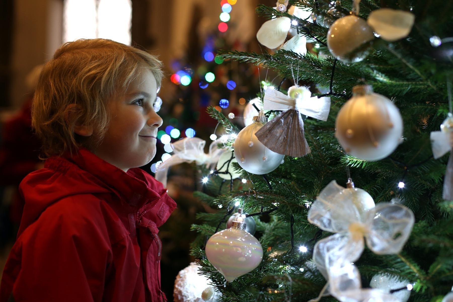 CELEBRATE: Benedict Mearns looks at one of the trees on display at a previous Christmas Tree Festival at St Edmund's Church Picture: CHRIS BOOTH