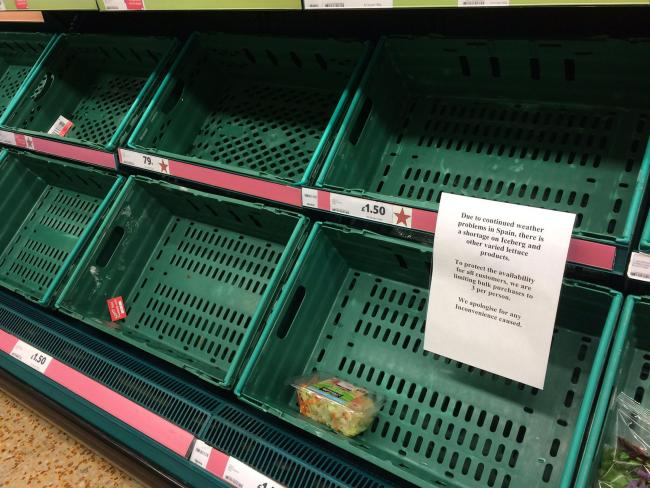 RATIONED: Photo taken with permission from the Twitter feed of @RobGregOnRetail of empty shelves at a Tesco store as lettuce became the latest staple to fall victim to the European vegetable shortage