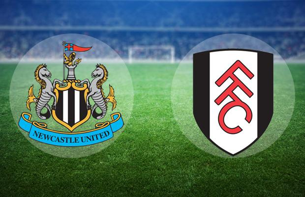 Fulham 0-4 Newcastle United 5 12 2019 Match Highlight