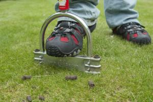 Using a lawn aerator to remove plugs of soil to improve aeration and drainage