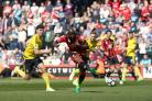 SLOTTING HOME: Benik Afobe scores Bournemouth's second goal in their 4-0 rout of Middlesbrough (Picture: Steve Paston/PA Wire)