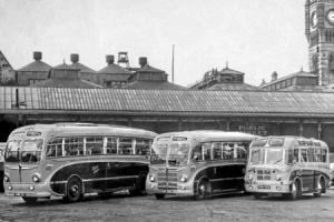 NEW FLEET: The first three coaches Reg Hunter bought after he acquired Scott's Greys in 1952: SHN 301, SHN 300 and RHN 548