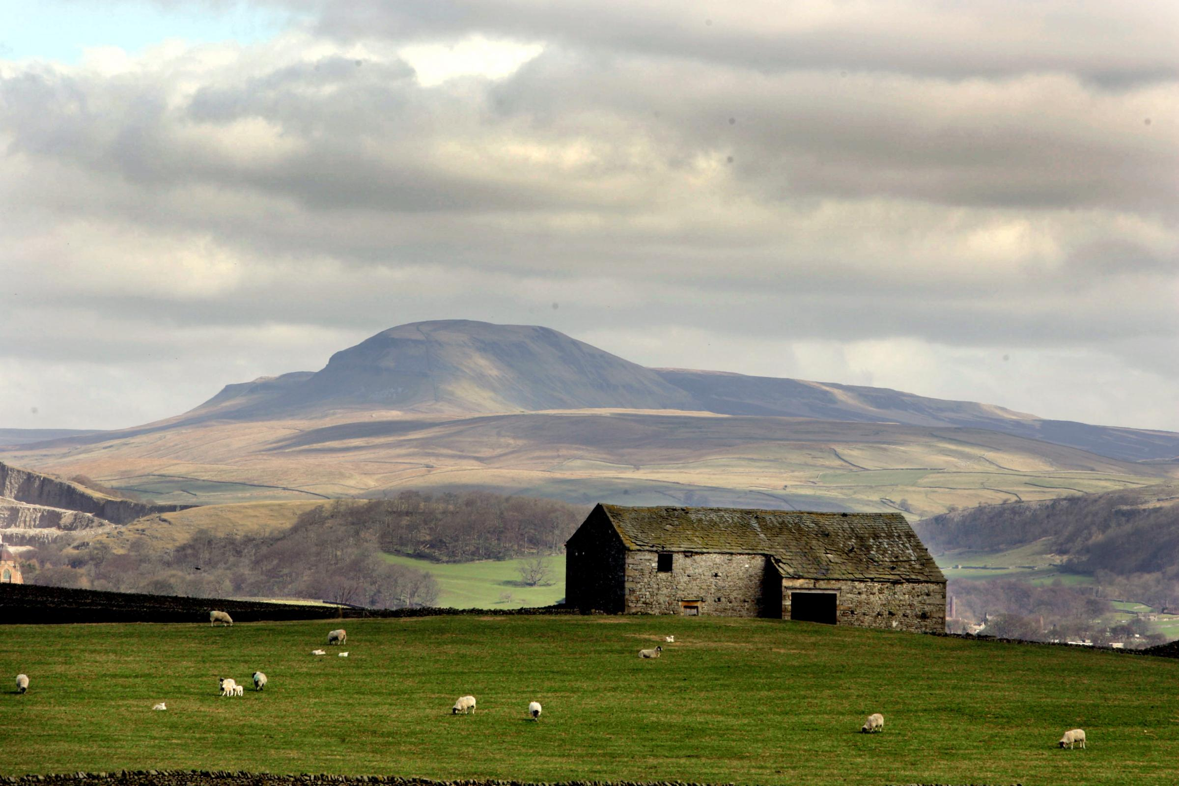 SUPPORT: A group has been set up to support farmers in the Yorkshire Dales post-Brexit