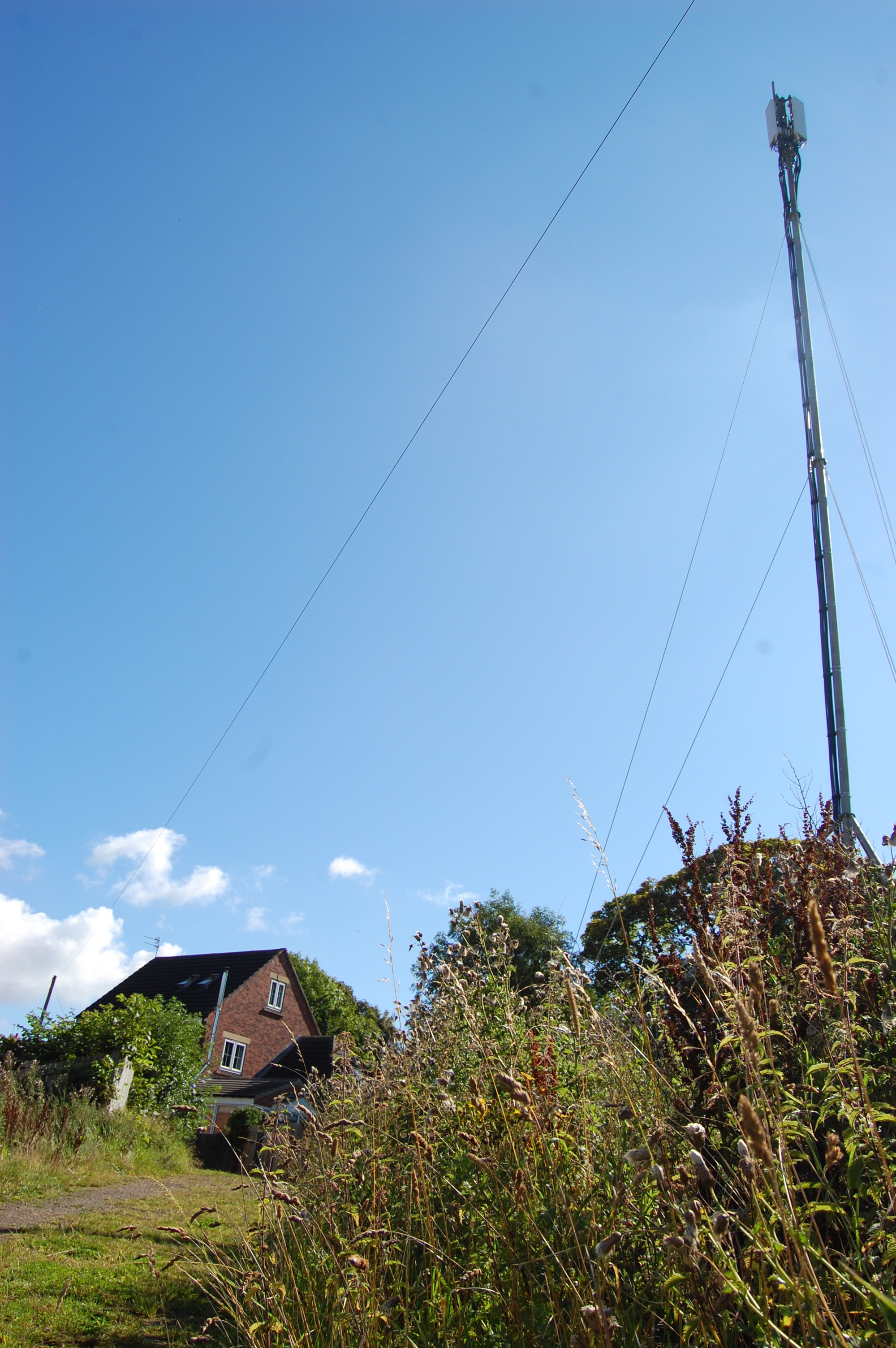 The proposed mast by EE would replace a temporary one installed last month at the bottom on Neville's Cross Bank, in Durham