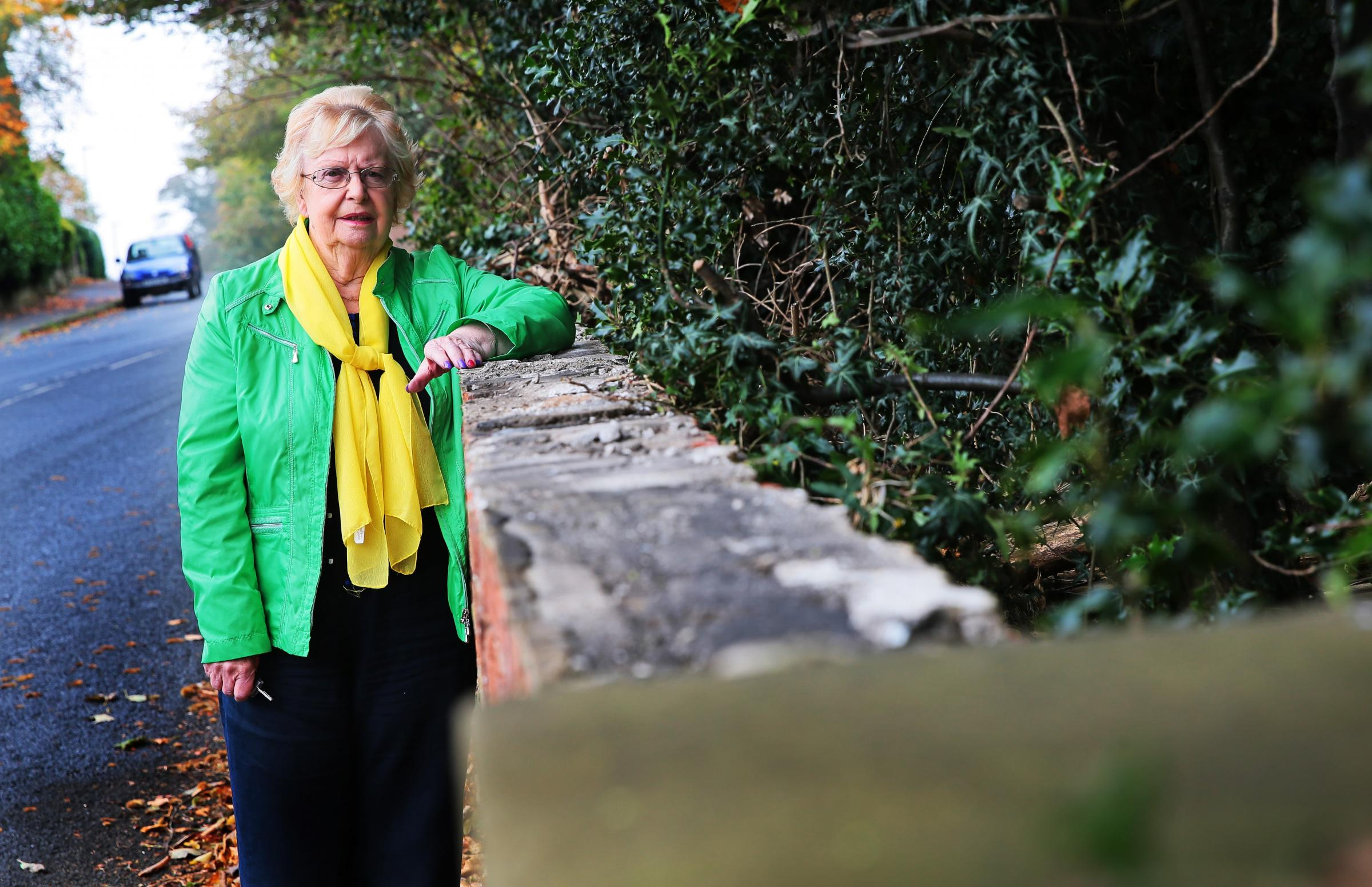 THEFT: Cllr Heather Scott next to the wall on Blackwell Lane where thieves have been stealing coping stones from it Picture: SARAH CALDECOTT