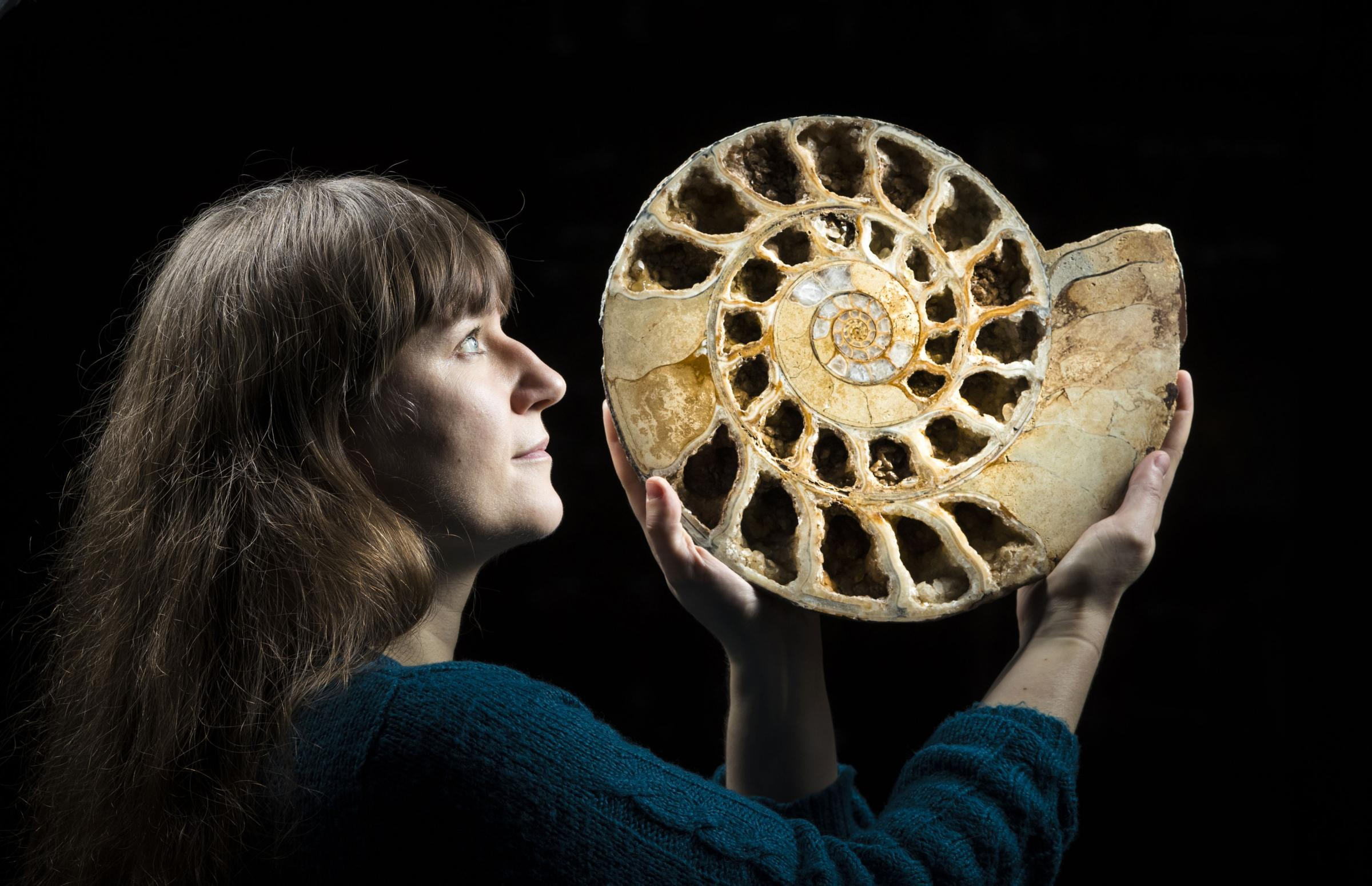 ANCIENT: Sarah King, curator of natural science at the Yorkshire Museum in York, holds a 170 million year old ammonite fossil