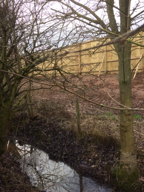 DRAINAGE: The view from the back garden of a home on Woodlands Walk in Stokesley