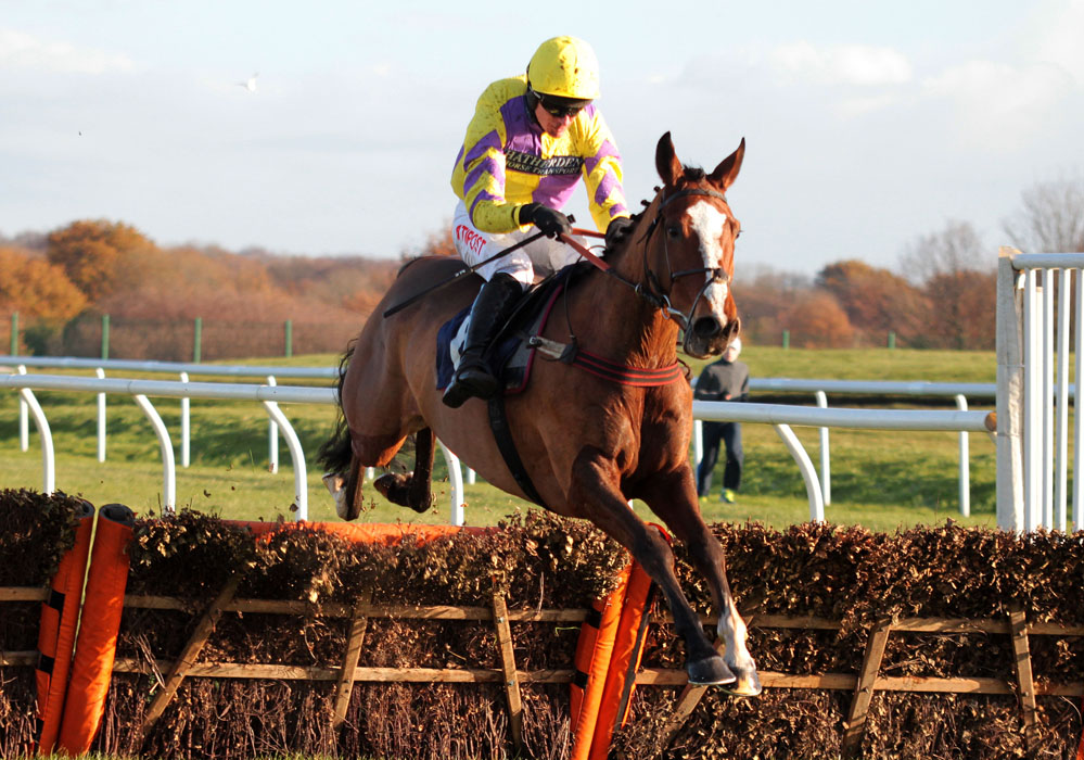 Enniscoffey Oscar, which runs in the MansionBet Handicap Hurdle at Doncaster. Picture: Doncaster Racecourse