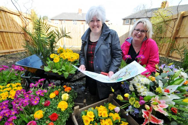 Harrogate spring flower show offers help to those dealing with help from boggy blank sheet to showstopper judy preston left from harrogate mightylinksfo