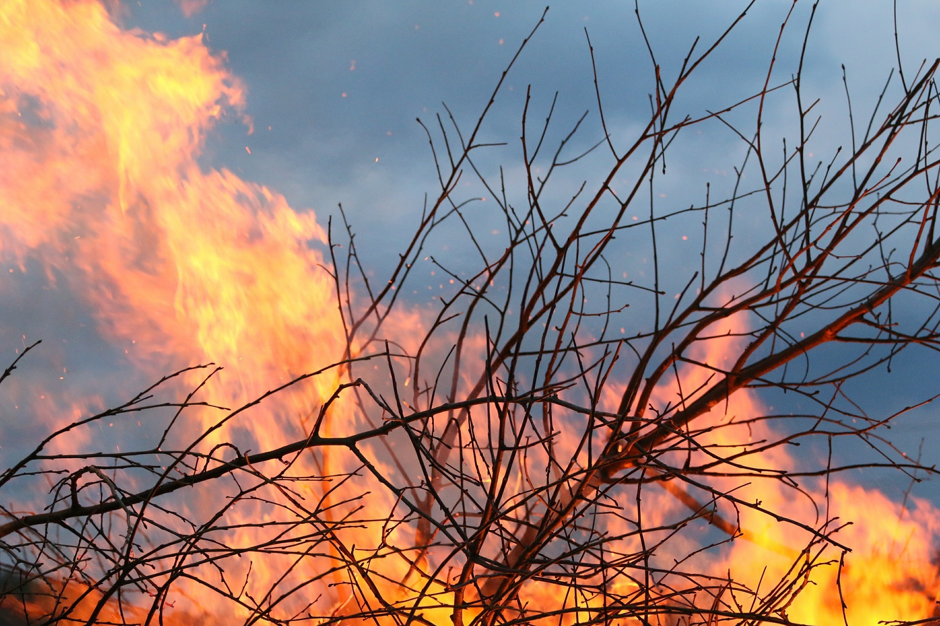 FIRE: A gorse fire took hold in Catterick Garrison on Wednesday evening. Picture: Pixabay